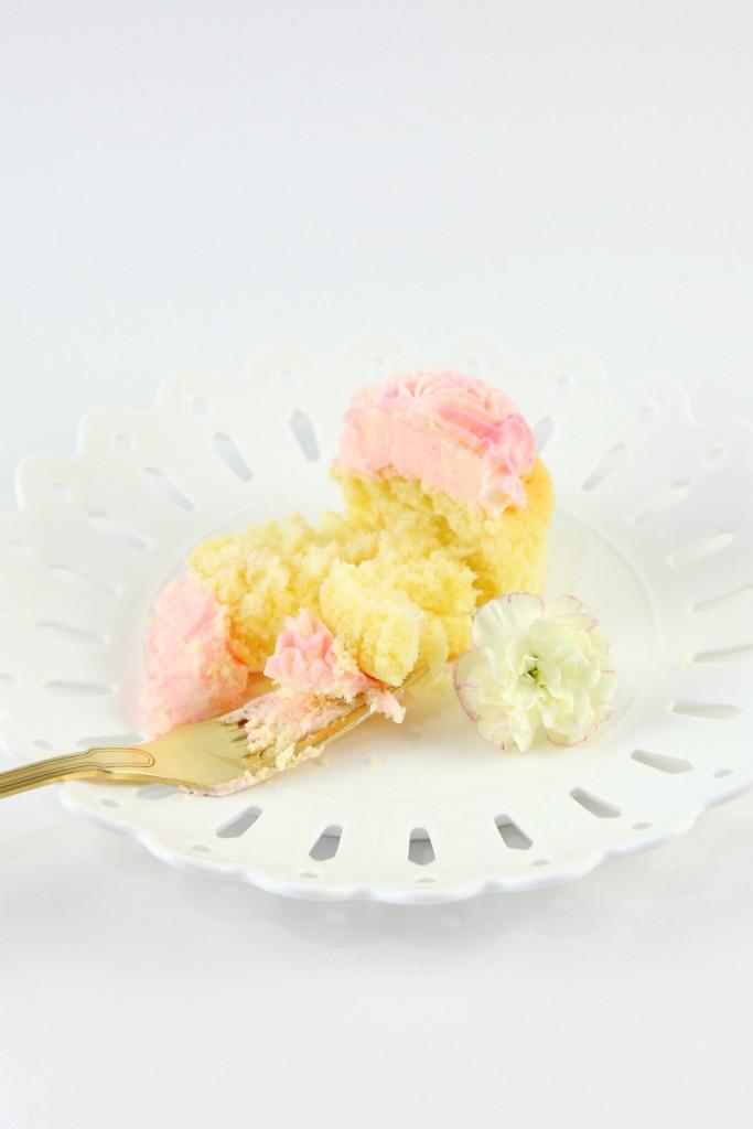 carnation-pink-champ-3-1