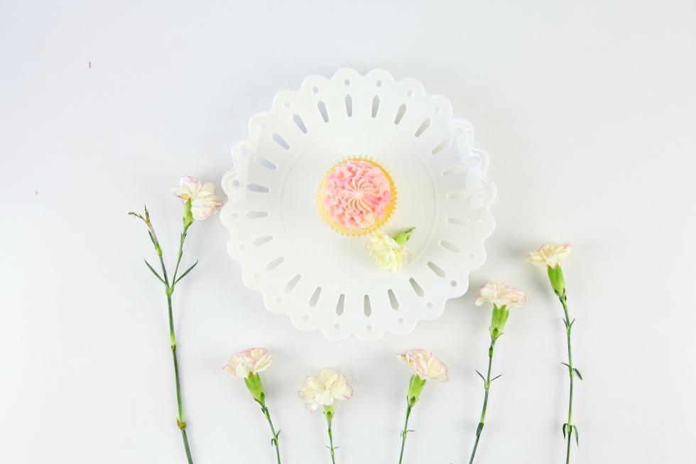 carnation-pink-champ-1